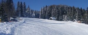 Stari Vrh Ski Resort taxi destination